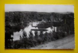 80- Cpsm Petit Format  - CHAUSSOY-EPAGNY - Les étangs - France