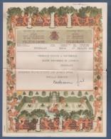 JOLI TELEGRAMME ROYAUME DE BELGIQUE 1955 - ILLUSTRATEUR CADEAU - ANGES - A. 14 (F.V.) - BRUXELLES - Stamped Stationery