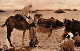Divers       59       Le Retour Du Chamelier ( Texte De Guerre ) - Tunisie