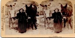 Stereofoto - Comrades - Die Gefährten 1894 - Stereoscopi