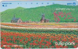 JAPAN - 431-101 - TULIP PARK - Japan