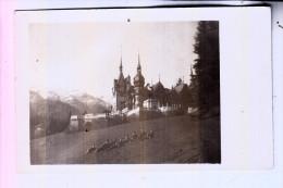 ROMANIA / RUMÄNIEN - SINAIA, Königl. Schloß 1918, Photo-AK - Rumania