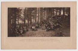 Chasseurs Alpins Dans Les Vosges - Camp Sous Bois - Guerre 1914-18 - 1914-18