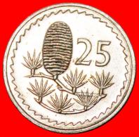 ★CEDAR Of LEBANON: CYPRUS 25 MILS 1977! LOW START★NO RESERVE! - Chipre