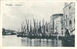 CHIOGGIA (VE) - BRAGOZZI - F/P  -  V - Venezia (Venice)