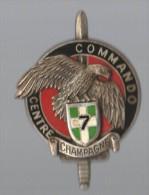 INSIGNE  7° RI CENTRE COMMANDO CHAMPAGNE - DRAGO PARIS G 2599 - Armée De Terre