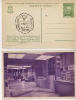 VISTA PARCIAL DE LA EXPOSICION JUSTICIALISMO PERONISMO FDC TARJETA POSTAL OHL - Postal Stationery