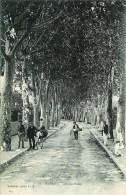 Algérie BLIDA  Avenue Bizot - Blida