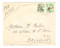 Belgisch Congo Belge TP Fleurs S/L.Avion C.Nizi En 1956 V.Bruxelles PR2509 - Poste Aérienne: Lettres
