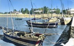 Madagascar - Majunga - Le Port De Pêche - Madagascar
