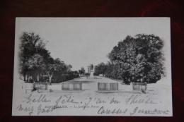 MONTPELLIER - Le Jardin Du PEYROU,1902 - Montpellier