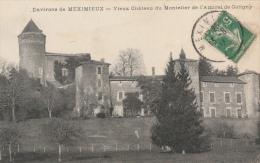 01 MEXIMIEUX  -CHAVAGNIEUX  Vieux Château Du Montelier De L'amiral De Coligny - Autres Communes