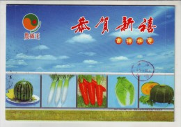 Watermelon,radish,carrot,chinese Cabbage,pumpkin,CN 07 Fuzhou Vegetable Seed Company Advert Pre-stamped Letter Card - Vegetables