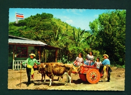 COSTA RICA  -  Family With Oxcart  Used Postcard As Scans - Costa Rica