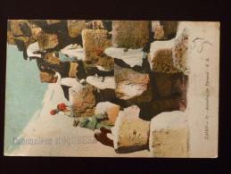Canonnière MOQUEUSE, Sur Carte Postale Illustée Du Caire, Non Oblitérée, Mais écrite En Mai 1907 - Poste Navale