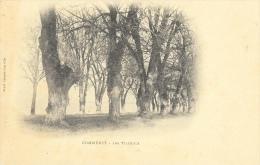 Commercy - Les Tilleuls - Edition Veuve H. Cabasse - Carte Précurseur, Non Circulée - Arbres