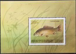 Kyrgyzstan, 1994, Mi. 48 (bl. 6), Sc. 52, SG 47, Fishes, MNH - Kyrgyzstan