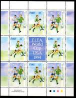 Ireland 1994 Football World Cup Sheetlet, MNH - 1949-... Republic Of Ireland