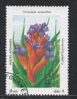Afghanistan 1985. Scott #1148 (U) Fleurs, Flowers, Tillandsia Aeranthos * - Afghanistan