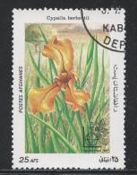Afghanistan 1985. Scott #1151 (U) Cypella Herbertil, Fleur, Flower * - Afghanistan