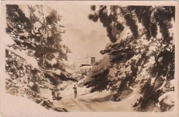 Carte Années 40-50 Des Pyrénées  - Ski - Alpinisme - Sports D´Hiver - Font Romeu - Le Grand Hôtel Vu De La Forêt - Alpinisme