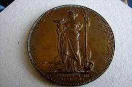 Médaille Contre L'alcoolisme Signé Oudiné - Professionnels / De Société