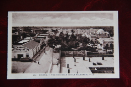 BISKRA - Vue Générale Sur La Palmeraie - Biskra