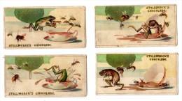 4 Chromos Chocolat Stollwerck, En Allemand,  Allemagne, Deutschland, Gruppe 158, Grenouille, Frosch, Insects, Insekten - Stollwerck