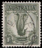 Australie 1937. ~ YT 118 Par 3 - Oiseau-lyre - Oblitérés