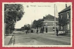 Pâturages - Avenue De La Belle Maison  ( Voir Verso ) - Colfontaine