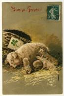 Bonne Année 1908   - Belle Carte Gaufrée .... Année 1908 - Maman Et Ses Petits  - Trèfle 4 Feuilles  - 2 Scans ) - Cochons