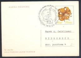 Poland 1974 Postal Stationery Card: Flora Flowers Blumen Fleurs Flores; Lilia Tygrysia Lilium Tigrinum Autumn Flowers - Plants