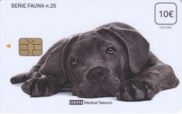 ISN-200 TARJETA DE ESPAÑA DE ISERN DE 10 EUROS DE LA SERIE FAUNA Nº25 (PERRO-CAN-DOG) - Chiens
