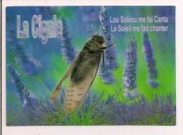 """Carte 3D  Lenticulaire - La Cigale """" Lou Soléou Me Faï Canta """"- Editions PEC -3D- 600003 - - Provence-Alpes-Côte D'Azur"""