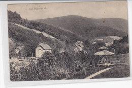 Bad Rippolds Au - 1915 Zensur - Bad Rippoldsau - Schapbach