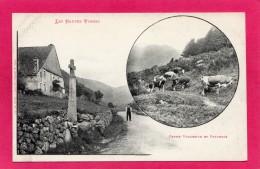 88 VOSGES, Les Hautes Vosges, Ferme Et Pâturage, Animée,  (Ad. Weick, St-Dié) - France