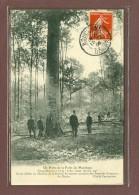 MARCHAUX (25) - UN HETRE DE LA FORET - CIRCONFERENCE 3m80 - SOCIETE DE SECOURS MUTUELS DES PREPOSES FORESTIERS - Altri Comuni