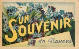 63 - Souvenir De Tauves - Puy De Dôme -  Voir Scans - France