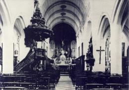 Wezemaal Binnenzicht St. Martinuskerk - Rotselaar