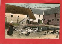Scènes De La Vie Normande - Visite à La Ferme - La Basse-Cour - Autres Communes