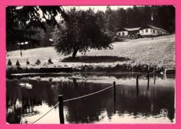 Centre De Vacances Y.W.C.A. - Louette-Saint-Pierre - L´Étang - NELS - 1973 - Gedinne