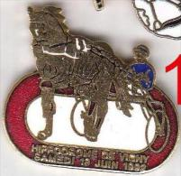 Pins 1 PIN´S CHEVAL EN EMAIL GRAND FEU - Animales