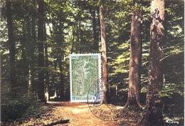 FRANCE. MAXICARD. FOREST - Marcofilia (sobres)