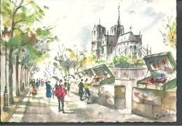 ! - France -  Paris - Notre Dame Et Les Bouquinistes - Peinture Signée Zoé - France