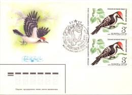 Noyta CCCP - Dendrocopos Minor - Mockba 18/9/1979  (01.16franc0040) - Climbing Birds