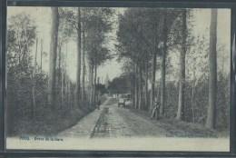 CPA BELGIQUE - Pecq, Drève De La Gare - RARE - Pecq