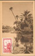 Carte Maximum , Colomb  Béchar  Oued Dans L'Oasis - Bechar (Colomb Béchar)