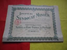 SYNDICAT MINIER (1907) - Shareholdings