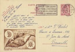 PUBLIBEL 812°: ( Le DORYPHORE ... ) : INSEKTEN,INSECTES,AARDAPPELEN,POMMES De TERRE,POTATOES, - Enteros Postales