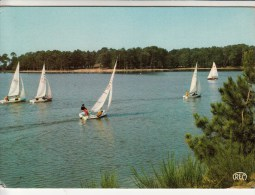 41 - Environs De NOUAN LE FUZELIER (étang, Domaine De Chalès Des Orphelins Des Douanes Régate De Voiliers) - Autres Communes